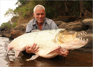 goliath-tigerfish-photo-04